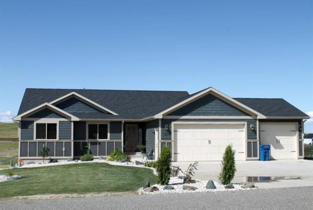 1603 Stirrup Road, Billings, MT 59105 (MLS #300173) :: The Ashley Delp Team