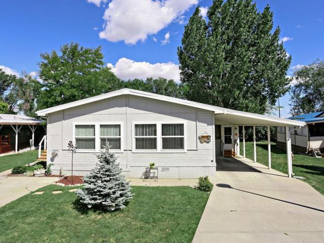 2 Rodeo Place, Billings, MT 59102 (MLS #300175) :: The Ashley Delp Team