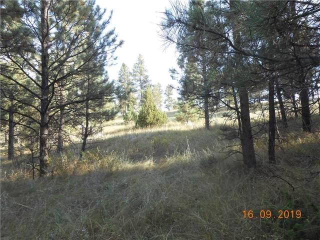 00 Tree Top, Roundup, MT 59079 (MLS #300795) :: MK Realty