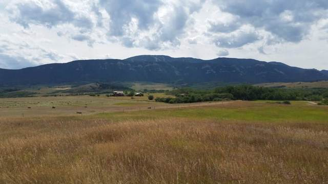 0 Private Drive, Red Lodge, MT 59068 (MLS #300862) :: MK Realty