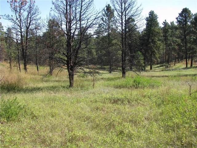 NHN Bobcat Lane, Roundup, MT 59072 (MLS #300979) :: The Ashley Delp Team