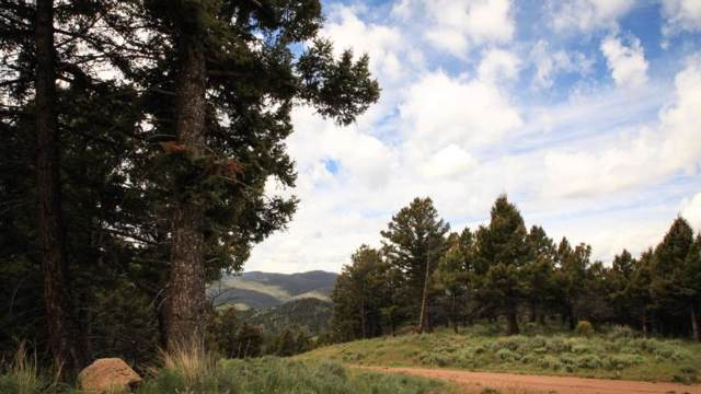 0 High Ore Road, Boulder, Other-See Remarks, MT 59632 (MLS #301192) :: Realty Billings