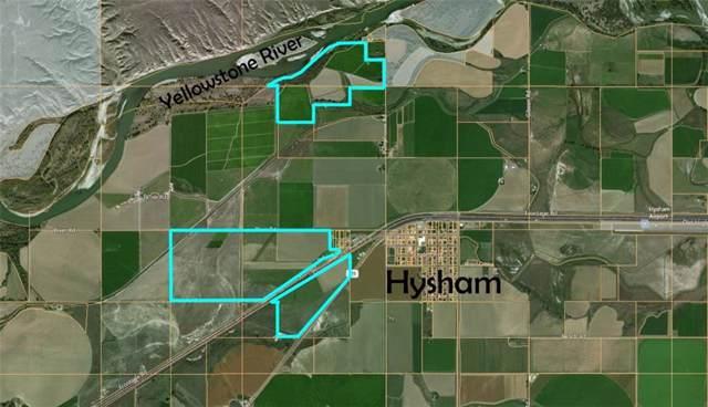 00 River Road, Hysham, MT 59038 (MLS #301217) :: MK Realty