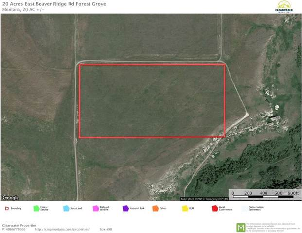 20 Acres East Beaver Ridge Road; Forest Grove, Other-See Remarks, MT 59441 (MLS #301484) :: The Ashley Delp Team