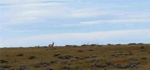 320 Acres Golf Course Road, Roundup, MT 59072 (MLS #301489) :: MK Realty