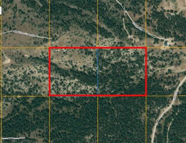 NHN Medicine Crow Dr, Columbus, MT 59019 (MLS #301948) :: Realty Billings