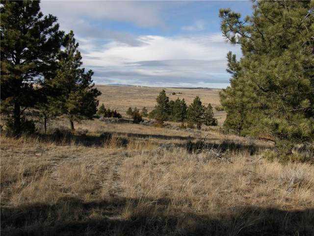 TBD Woodland Road, Roundup, MT 59072 (MLS #302653) :: Search Billings Real Estate Group
