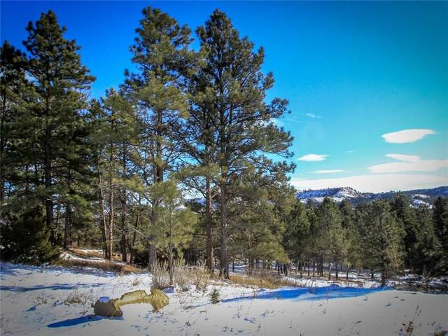 2 Bruner Mountain Road, Roundup, MT 59072 (MLS #302787) :: The Ashley Delp Team