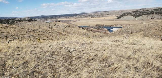 Lot 226 Pelican Point Road, Reed Point, MT 59069 (MLS #303205) :: Search Billings Real Estate Group