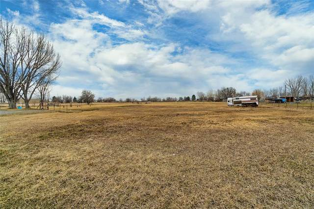 TBD Razor Cir, Shepherd, MT 59079 (MLS #303244) :: MK Realty