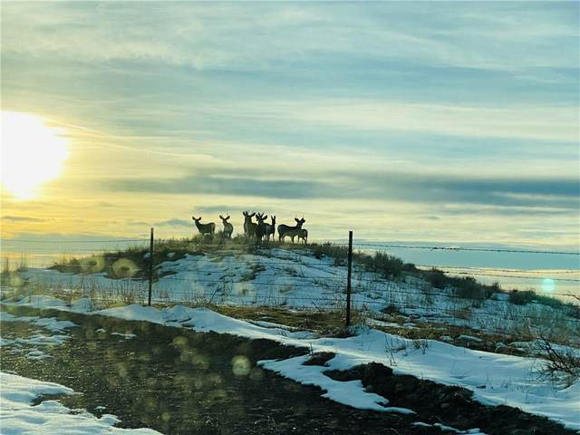 0 Yellowstone Trail, Huntley, MT 59037 (MLS #303249) :: Search Billings Real Estate Group