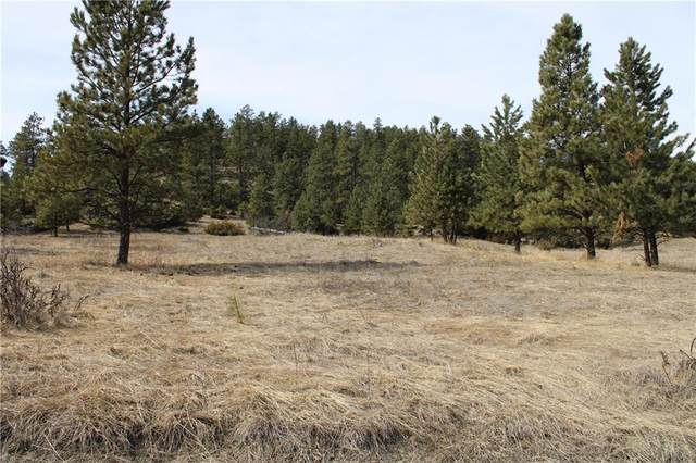 00 Bear Paw Rd, Columbus, MT 59019 (MLS #303671) :: Search Billings Real Estate Group