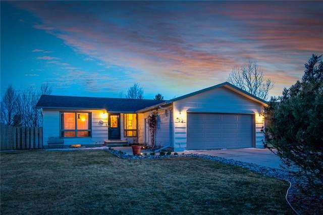 930 Calico, Billings, MT 59105 (MLS #303732) :: Search Billings Real Estate Group