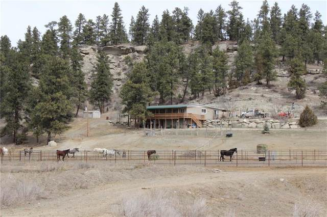 221 Hay Coulee Road, Roundup, MT 59072 (MLS #303781) :: The Ashley Delp Team