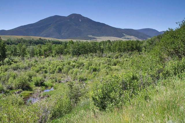 9 Pond Lane, Red Lodge, MT 59068 (MLS #303945) :: Search Billings Real Estate Group
