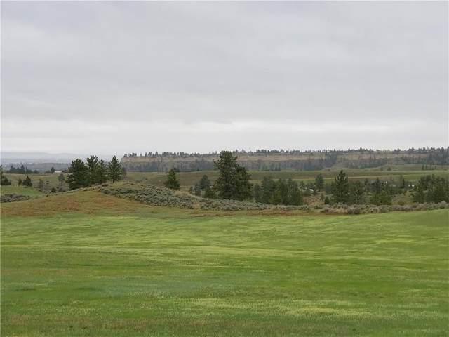 000 Old Pine Drive, Billings, MT 59101 (MLS #304278) :: MK Realty