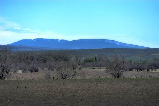 164 Acres Highway 310, Fromberg, MT 59029 (MLS #305300) :: The Ashley Delp Team