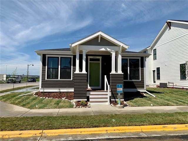 6051 Farmstead Avenue, Billings, MT 59101 (MLS #305407) :: MK Realty