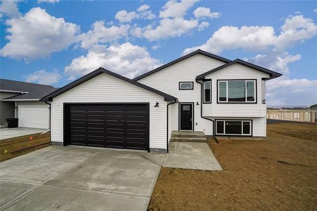 1510 Rancho Vista, Billings, MT 59105 (MLS #305539) :: Search Billings Real Estate Group