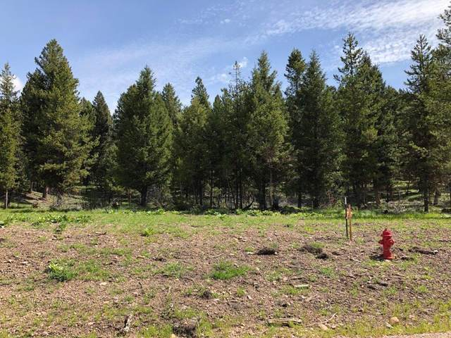 207 Silvertip Trail, Seeley Lake, Other-See Remarks, MT 59868 (MLS #305887) :: Search Billings Real Estate Group