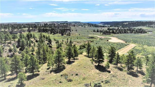 21A-2 Far Away Trail, Billings, MT 59106 (MLS #305935) :: Search Billings Real Estate Group