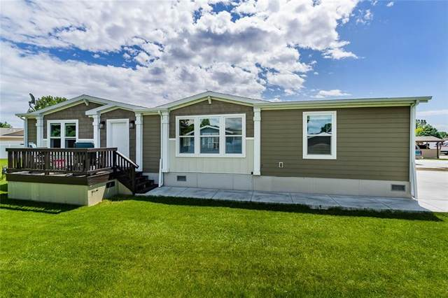 310 Nesting Place, Billings, MT 59102 (MLS #305938) :: Search Billings Real Estate Group