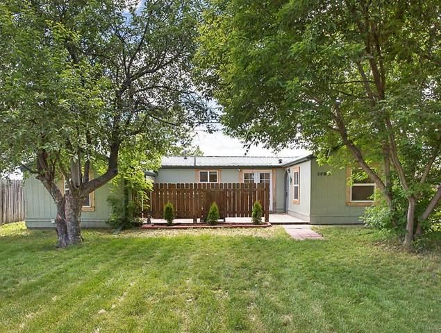 1738 Avenue B, Billings, MT 59102 (MLS #306031) :: MK Realty