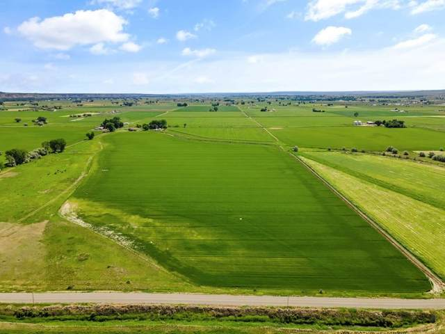 Lot 2A N 10th Rd., Worden, MT 59088 (MLS #307470) :: Search Billings Real Estate Group
