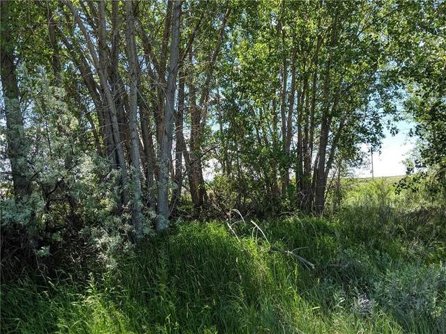 32 Beartooth View, Laurel, MT 59044 (MLS #307506) :: The Ashley Delp Team