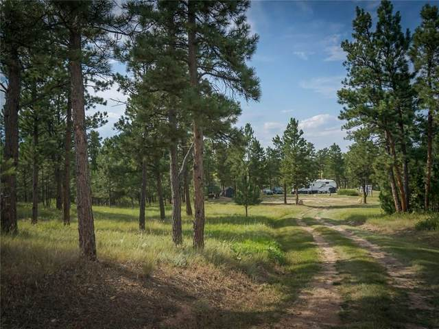 51 Tranquility Lane, Roundup, MT 59072 (MLS #309277) :: MK Realty