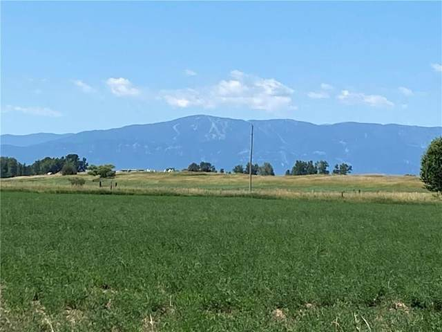 TBD Cooney Road, Roberts, MT 59070 (MLS #309405) :: MK Realty