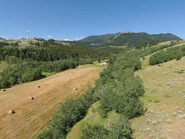 TRACT 33 Remington Ranch, Red Lodge, MT 59068 (MLS #309416) :: The Ashley Delp Team