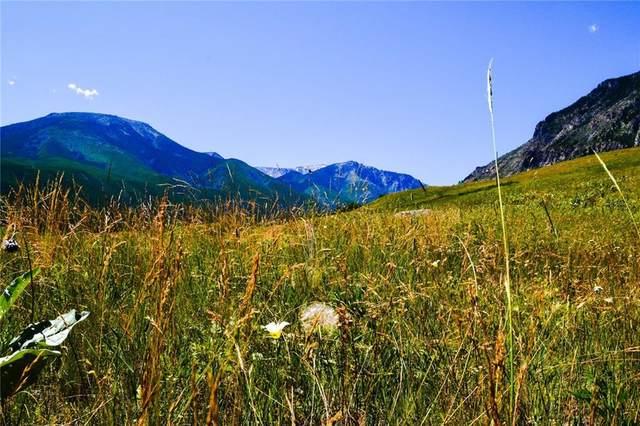 NHN Getaway Trail, Red Lodge, MT 59071 (MLS #310467) :: MK Realty