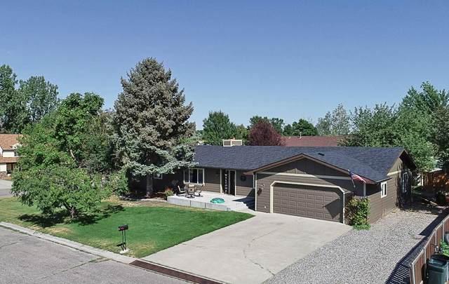 307 Cody Cir, Billings, MT 59105 (MLS #310488) :: Search Billings Real Estate Group