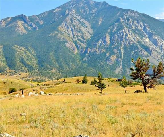 83 Lupine Trail Lot 30, Nye, MT 59061 (MLS #311029) :: The Ashley Delp Team