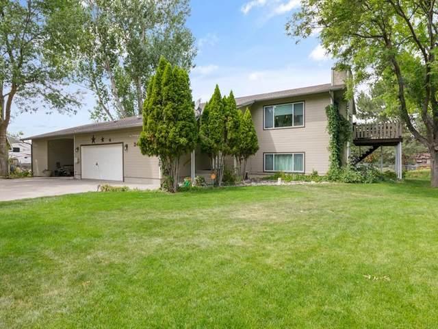 3459 Mitzi Drive, Billings, MT 59101 (MLS #311034) :: MK Realty