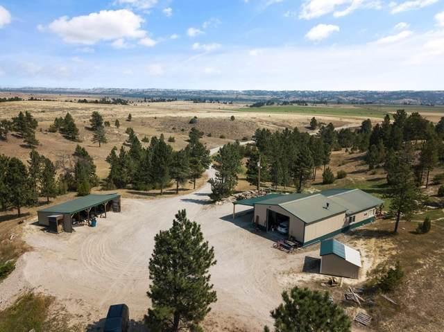 3980 Us Highway 47, Custer, MT 59024 (MLS #311056) :: The Ashley Delp Team