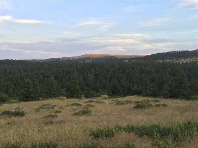 Lot 58 Medicine Crow, Columbus, MT 59019 (MLS #311302) :: The Ashley Delp Team