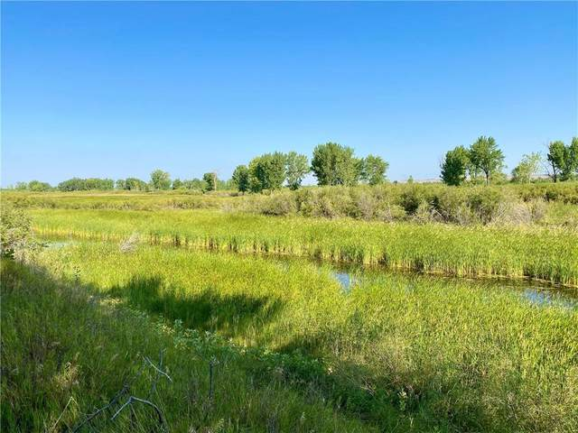 Nhn County Road 355, Fairview, Other-See Remarks, MT 59221 (MLS #311303) :: MK Realty