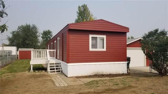 3301 Phillip Street, Billings, MT 59101 (MLS #311407) :: Search Billings Real Estate Group