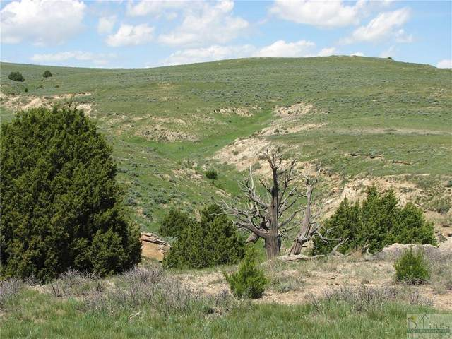 nhn Golden Yarrow Crt, Lance Creek, Wyoming, Other-See Remarks, MT 82225 (MLS #311668) :: MK Realty