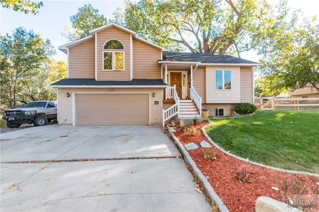 210 Covert Ln, Billings, MT 59105 (MLS #311768) :: Search Billings Real Estate Group