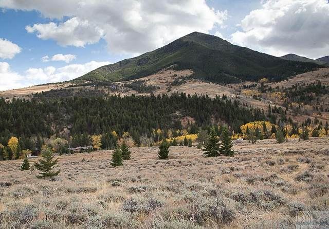 TRACT 4 Elk Tracts, Red Lodge, MT 59068 (MLS #311875) :: MK Realty