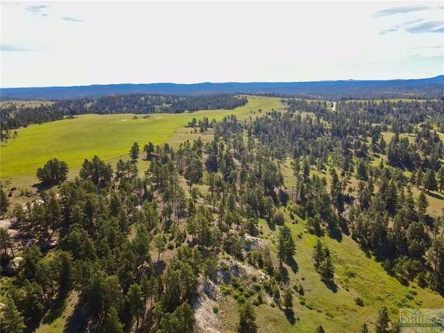 TBD Bender Rd, Roundup, MT 59072 (MLS #311945) :: The Ashley Delp Team
