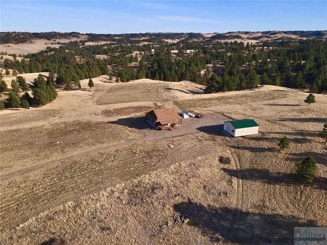 96 Boulder Canyon Lane, Hysham, MT 59038 (MLS #313338) :: The Ashley Delp Team