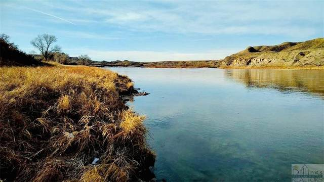 0 Missouri River, Other-See Remarks, MT 59442 (MLS #313429) :: The Ashley Delp Team