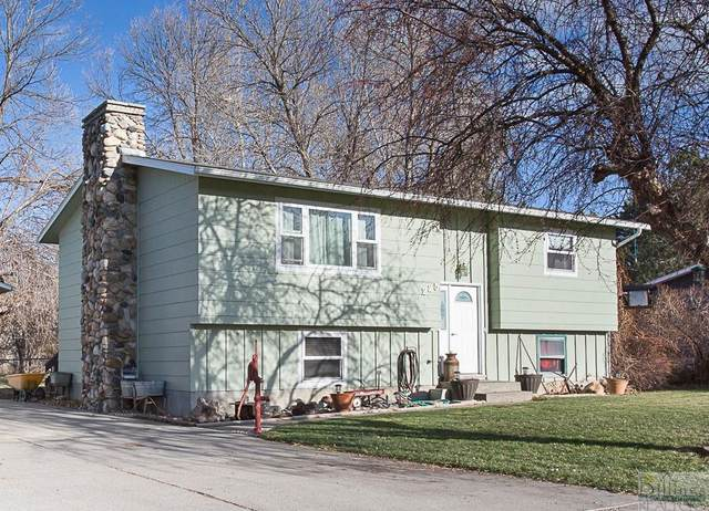 225 Rolling Meadow, Billings, MT 59101 (MLS #313451) :: Search Billings Real Estate Group