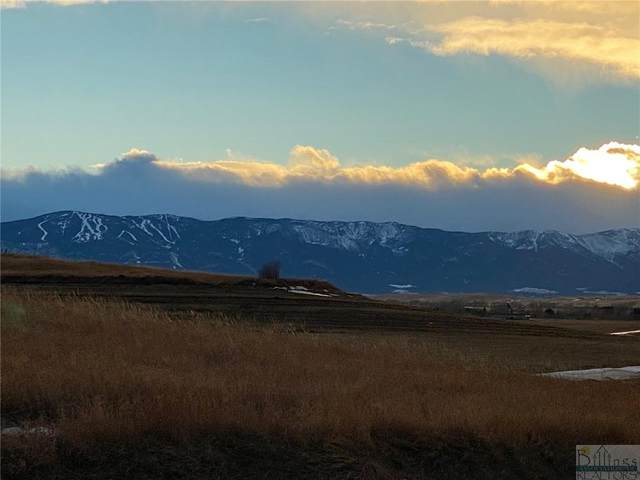 LOT 153 Internet Access, Roberts, MT 59070 (MLS #314868) :: The Ashley Delp Team