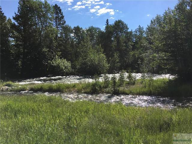 24 Jones Ln, Red Lodge, MT 59068 (MLS #315016) :: The Ashley Delp Team