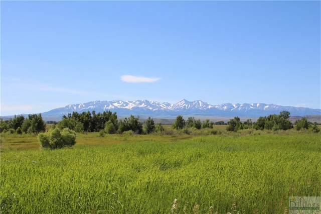TBD Windsong Way, Big Timber, MT 59011 (MLS #315039) :: The Ashley Delp Team